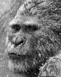 снежный человек Йети